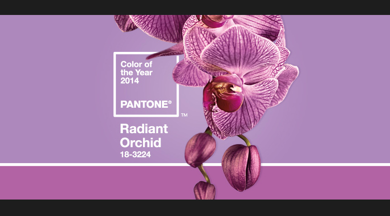radiant-orchid wedding color of the year
