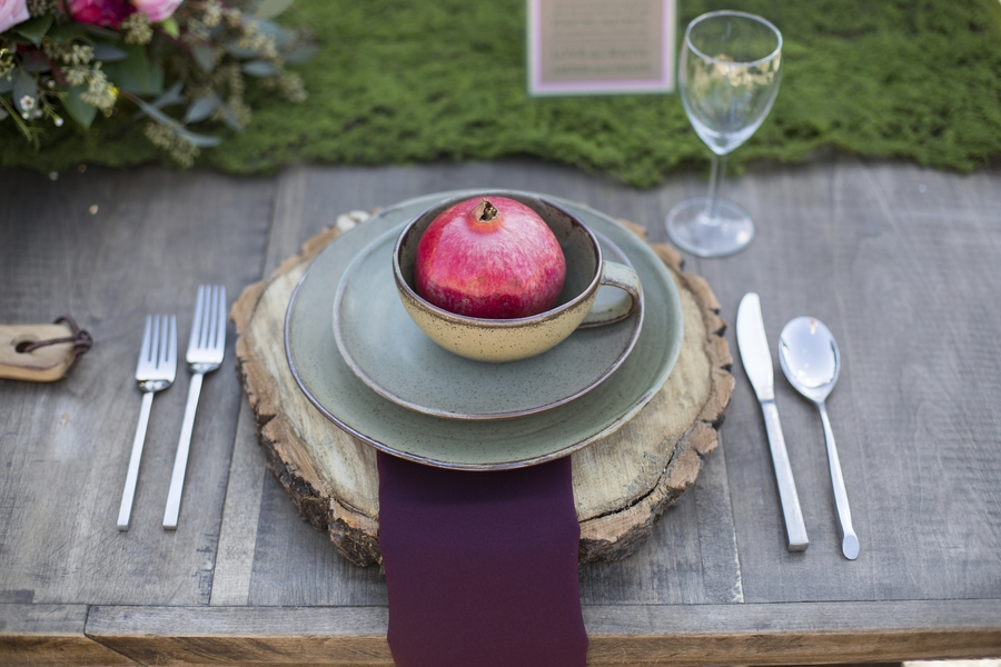 Perfect plate setting for a winter rustic wedding!