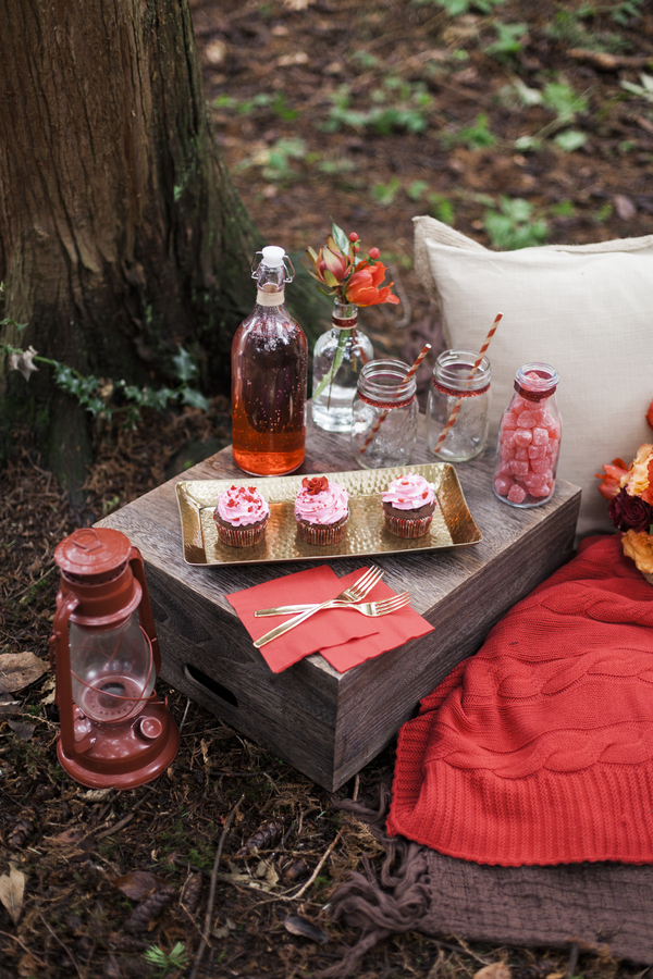 sweet valentine's day surprise picnic - rustic folk weddings, Ideas